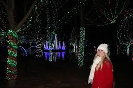 Zoo Lights Columbus Oh by Columbus Zoo Wildlights Ohio Girl Travels