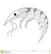 t shirt coloring page hand drawn zentangle shrimp for anti stress coloring pages
