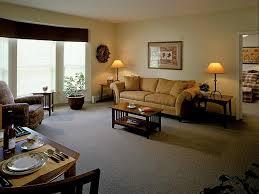 standard apartment living room carameloffers