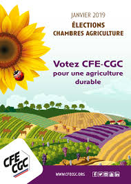 cfe chambre agriculture accueil sncea