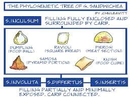 the definitive sandwich family tree the nib medium