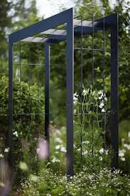 garden trellis support plants reach their potential