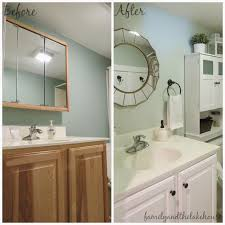 Bathroom Before And After Photos Family And The Lake House Guest Bathroom Before And After