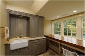 Home Depot Martha Stewart Kitchen Cabinets by Furniture Martha Stewart Vanity Laundry Room Cabinets Home