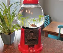 gumball machine fish tank 4 steps with pictures