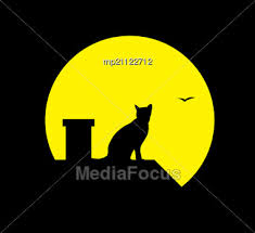 stock photo silhouette cat at moon black background image