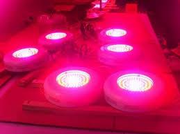 ufo led grow light 90 watt ufo led grow lights indoor plant cannabis 14 weeks harvest