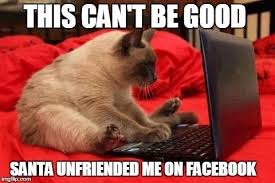 Cat Laptop Meme - laptop cat imgflip