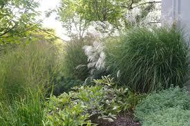 ornamental grass garden traditional landscape new york by