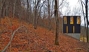 Wall Mural Dense Forests Peel Johnsen Schmaling Architects
