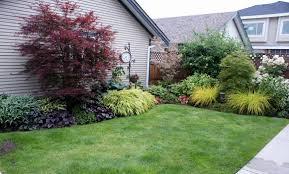 reader photos a clean slate transformed fine gardening
