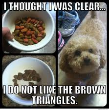 Dog Food Meme - i thought i was clear i do not like the brown triangles weknowmemes