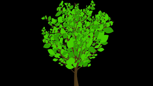 growing tree animation still leaves an animated illustration