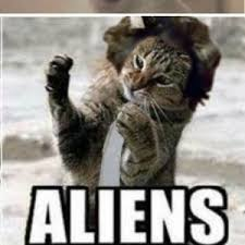 Cat Alien Meme - rmx aliens cat version by pavle vulinovic meme center
