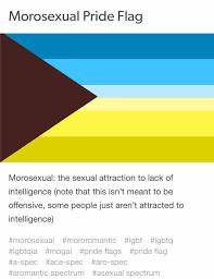 Aromantic Flag Katie Notopoulos On Twitter