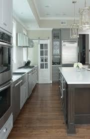 etched glass pantry doors etched glass pantry door transitional kitchen