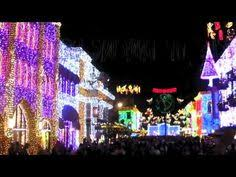 crazy christmas house christmas light displays pinterest
