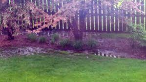 Water Drainage Problems In Backyard When Poor Drainage Causes Your Backyard To Retain Water
