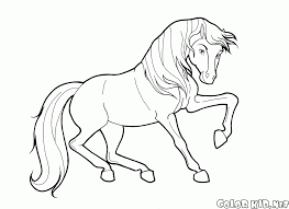 coloring page horse in motion