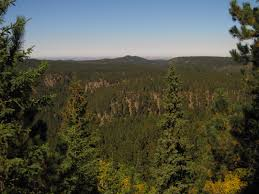 South Dakota forest images The hikemasters 39 trail descriptions old baldy mountain black jpg