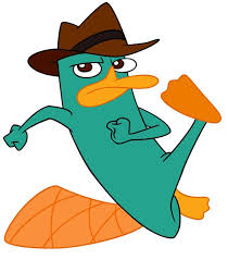 p perry the platypus phineas and ferb perry the platypus