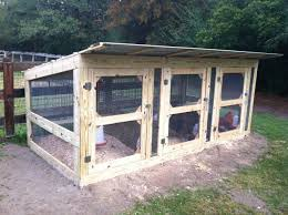 my lg fowl breeding pens backyard chickens
