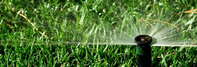 phoenix lawn sprinkler system services irrigation drip systems