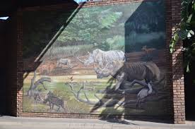 rhino wall painting pretoria south africa