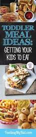 Quick Toddler Dinner Ideas 330 Best Images About Kid Food On Pinterest Healthy Toddler