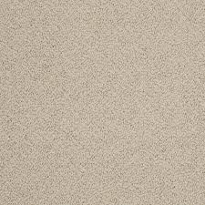 home decorators collection braidley color candlewick 12 ft