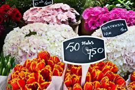 100 world best flower best fragrant flowers sunset dubai