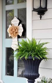 100 outside plants amazon co uk outdoor plants garden u0026