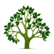 tree of life tree of life clipart 69992