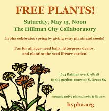 native plant and seed free plants and seeds u2014 hypha