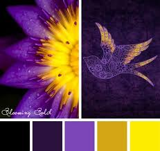 Colors That Go With Purple by Best 25 Yellow Complementary Color Ideas Only On Pinterest Blue