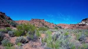 Utah vegetaion images A beautiful time lapse of the southern utah desert near capitol jpg