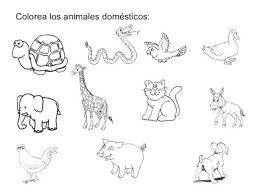 imagenes animales acuaticos para colorear animales oceanicos para colorear para y dibujos de animales