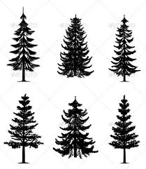 best 25 pine tree ideas on tree tattoos tiny