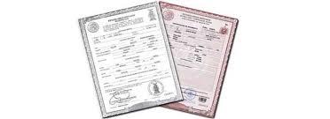 formato de acta de nacimiento en blanco gratis ensayos cómo solicitar actas de nacimiento por internet