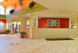 Comfort Suites Maingate East Kissimmee Florida Hotel Comfort Suites Maingate East En Kissimmee Destinia