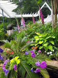 545 best cottage garden ideas from the barn nursery chattanooga