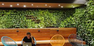 skale greenwall vertical garden systems the most advanced