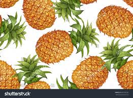 template for kitchen design pineapple on white background seamless botanical stock vector