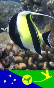 underwater images travel images com