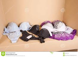 womens lingerie on display in shop stock photo image 43249107