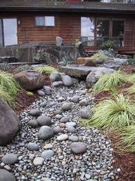 296 best xeriscape u0026 arid landscaping images on pinterest dry