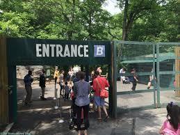 bronx zoo children u0027s zoo reopens video the mama maven blog