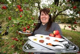 ecole de cuisine metz edition de metz ville crée le jardin des délices d iris à