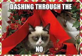Grumpy Cat Coma Meme - 10 of the funniest grumpy cat memes