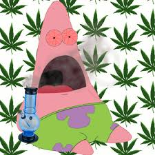 Patrick Moving Meme - gif weed marijuana smoke bong pot high smoking stoned patrick moving